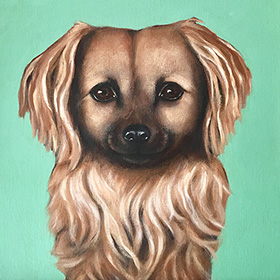 Pet portrait - Alfie - click here for a larger image